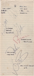 Beach Boys Original 1964 Autographs