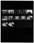 Cream/The Mamas & The Papas Original Jim Marshall Signed & Stamped Contact Sheet