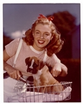 "Marilyn Monroe ""Norma Jeane Dougherty"" Original 11 x 14 Early Modeling Photograph"